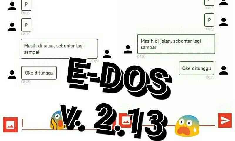 E-DOS 0