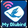Taxi Bluebird