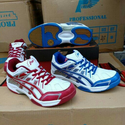 Sepatu Olahraga Bulutangkis 2