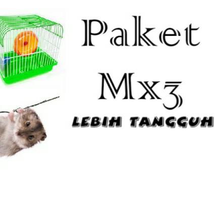 Paket Mx3