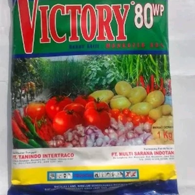 Victory 80 WP
